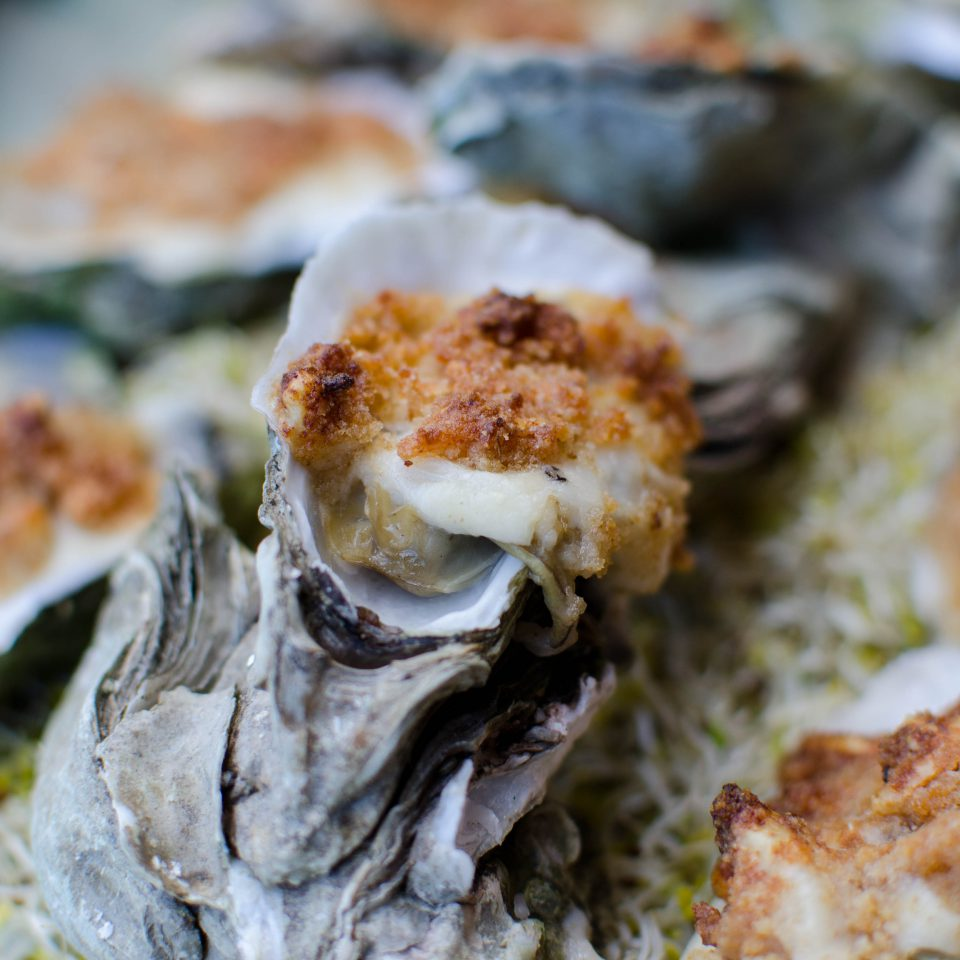 Oyster Gratin with Horseradish and Parmesan